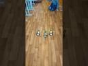 Детский центр робототехники Умник скоростные гонки