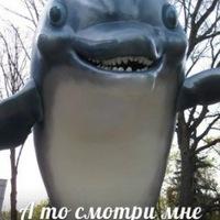 Asdfasfas Gagasgfas, 11 сентября , Хабаровск, id162033593
