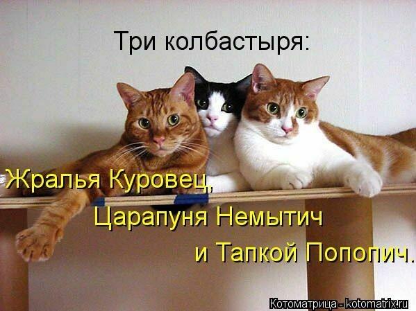 http://cs410721.vk.me/v410721917/7d67/c8kd5CM4xfk.jpg