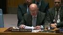 В А Небензя на заседании СБ ООН по иранской ядерной программе