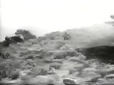 S01E13.The Naked Gallows