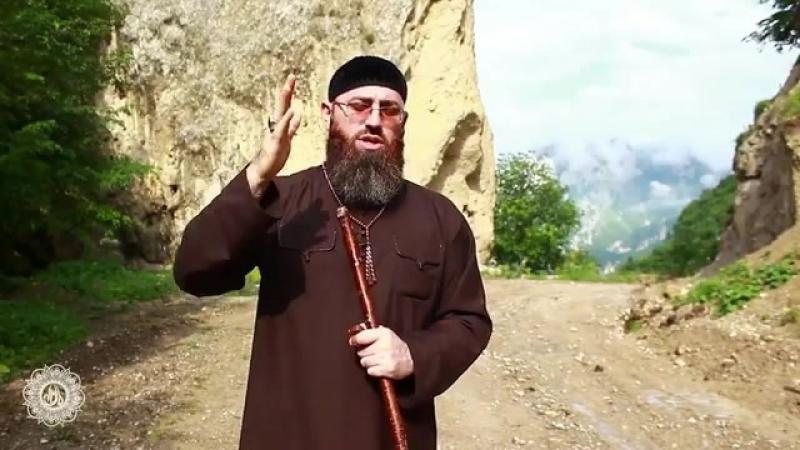 Проповедь шейха Адама Шахидова о пользах и благородных плодах частого произношения салаватов Пророку ﷺ.