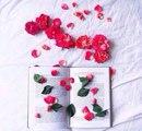 10 книг, которые стоит прочитать каждой женщине