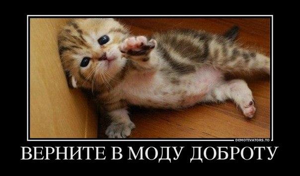 http://cs620930.vk.me/v620930423/1762/BfqRyIS-OiQ.jpg