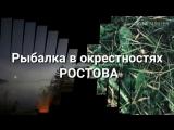VID_34330908_053109_300.mp4