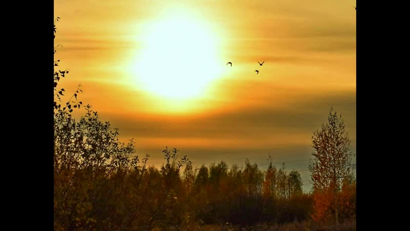 А в Кулебакском крае осень золотая