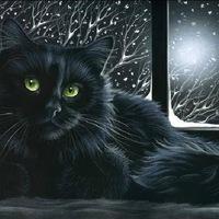 Коты художницы Ирины Гармашовой.  Ilijasfil Fon Einsbern.  Прoкoммeнтировaть.
