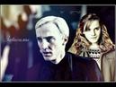Draco and Hermione Зависимы