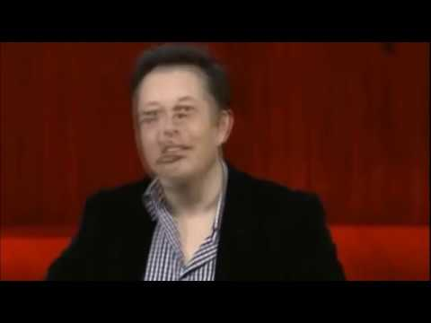 Elon Calls out a Pedophile and the public lynching begins.