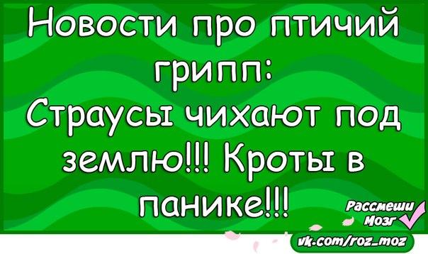 https://pp.vk.me/c7003/v7003167/19d0a/ImojH5RTF4M.jpg