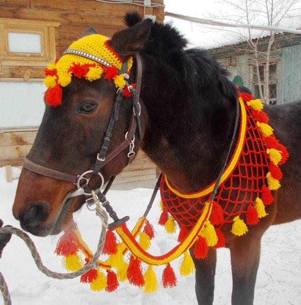 Все связано с лошадьми