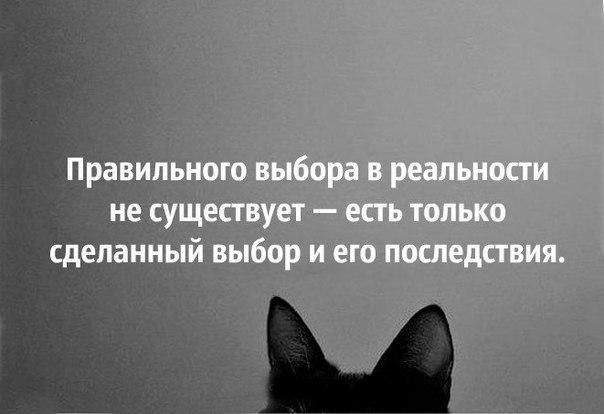 https://pp.vk.me/c620825/v620825938/13c89/WrTbUApw-lM.jpg