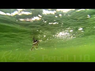 DUO`s Lures in Motion #6 - Realis Pencil 110