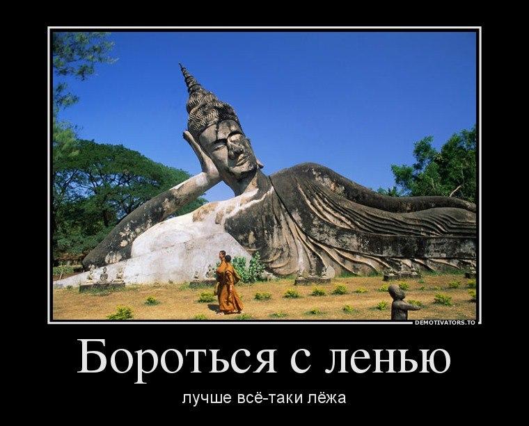 Когда хоста краснодарский край фото так оно всегда