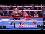 THE BEST KO's OF 2016!  /// ММА 95