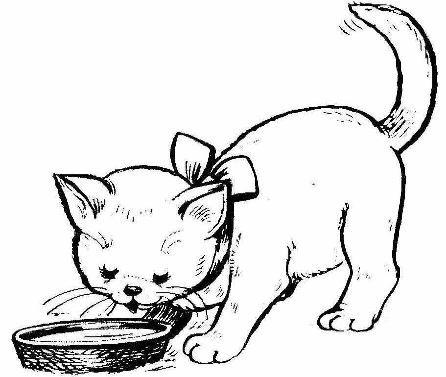 Раскраска котенок для детей распечатать
