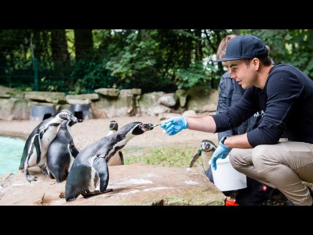 KidsClub Zootag mit Mario Götze und André Schürrle