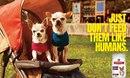 Реклама собачьего корма Hill's: Просто не кормите их как людей