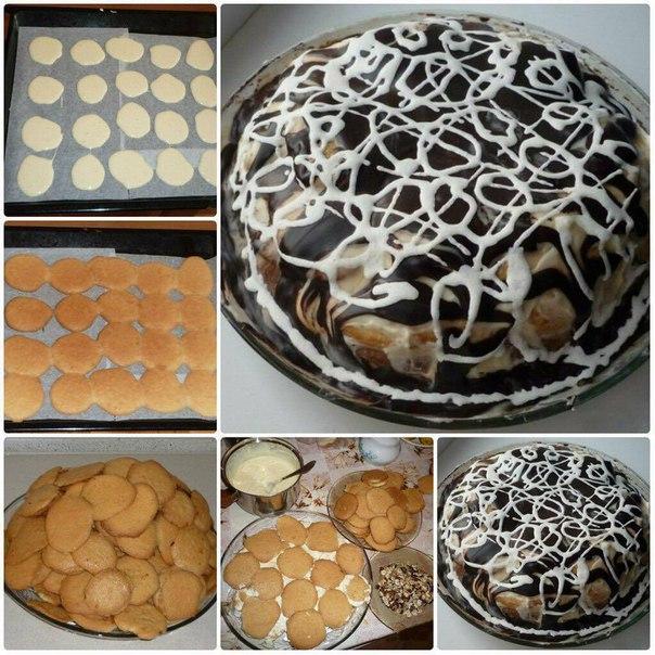 Рецепты тортов черепаха в домашних условиях с фото пошагово 205
