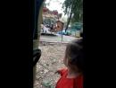 с Кирой катаемся на паравозике в парке им.Дурова