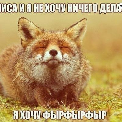 Алёнка Полякова, 20 июня , Санкт-Петербург, id1358348