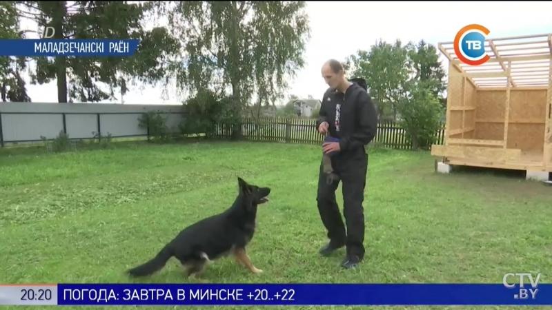 Кинолог из Молодечно дрессировал собаку которую снимали в фильме Мухтар