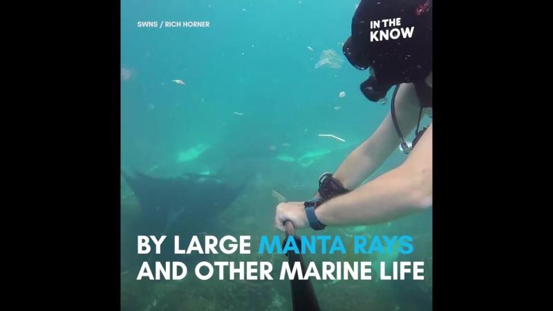 Дайвер плывет прямо сквозь мусор в океане недалеко от Бали! ??♂️