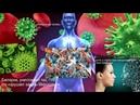 Бактерии или человек Гость в студии Гания Замалеева Врач натуротерапевт