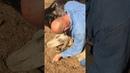 Hind Feet- Horse Rescue