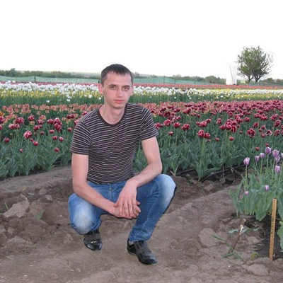 Олександр Жинжер, 11 сентября 1988, Черновцы, id41590429