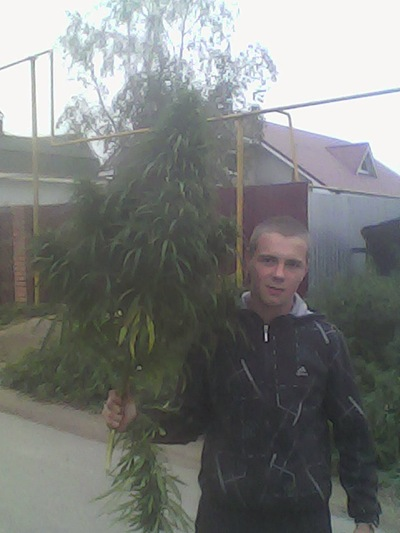 Сергей Карманов, 28 августа 1994, Челябинск, id188094693