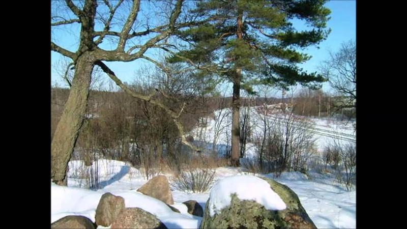 Я люблю тебя Выборг! 2 часть Парк Монрепо Муз слайд фильм Л Манюк Д Батунин