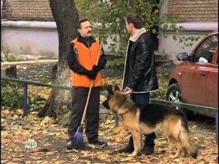 Возвращение Мухтара 2 - 8 сезон 66 - серия.