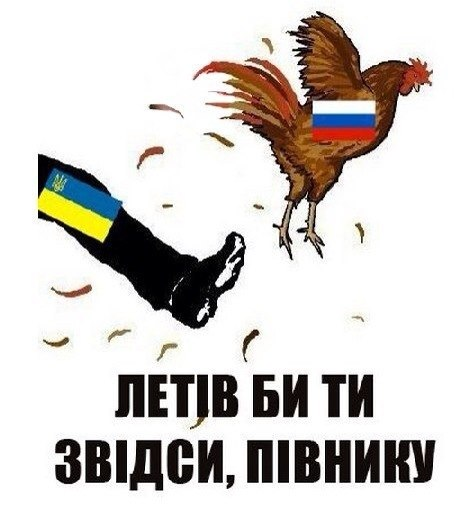 Украинская авиация нанесла удар по колонне боевиков в Краснодоне: террористы понесли большие потери, - СНБО - Цензор.НЕТ 7567