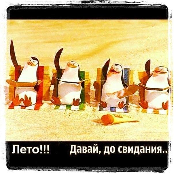 Okopkaru okopka Украина