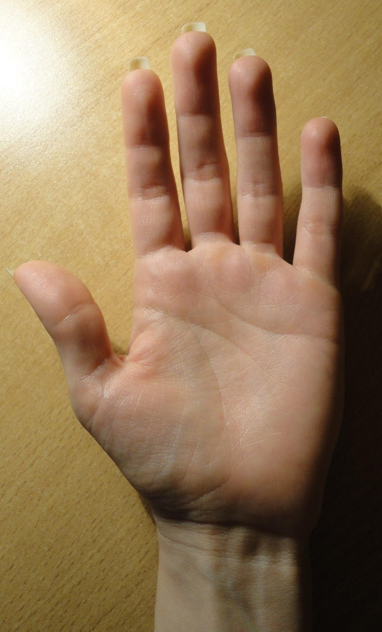 Рука в щелке 8 фотография