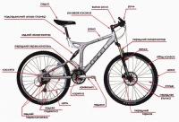 Вилка.  Элемент конструкции велосипеда предназначенный для крепления переднего колеса и выноса руля.