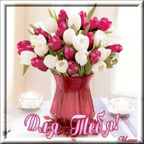 Поздравляю с 8 марта. С праздником весны и женщин. Желаю Вам добра И