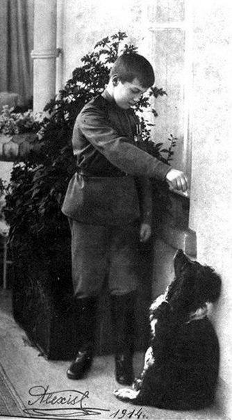 ДЖОЙ история царской собаки