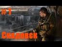 Прохождение СТАЛКЕР Зов Припяти STALKER Call of Pripyat - Часть 1 Скадовск