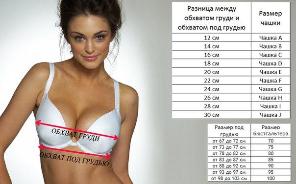 размер груди в