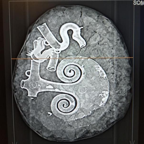Артефакты бронзового века обнаружили в Дании