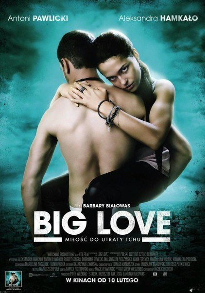 Большая любовь (2014)