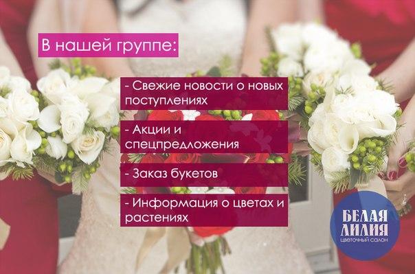 Цветы магнитогорск оптовые цены, заказ доставка цветов белая церковь