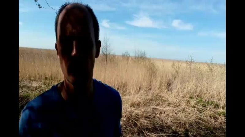 Сергиевка live Южный берег Невский губы