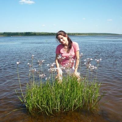 Лариса Ибрагимова, 11 сентября 1980, Сарапул, id71579295