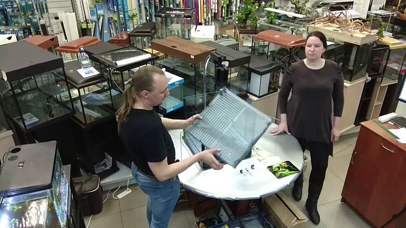 Мастер класс по оформлению террариума с живыми растениями в магазине Exomenu