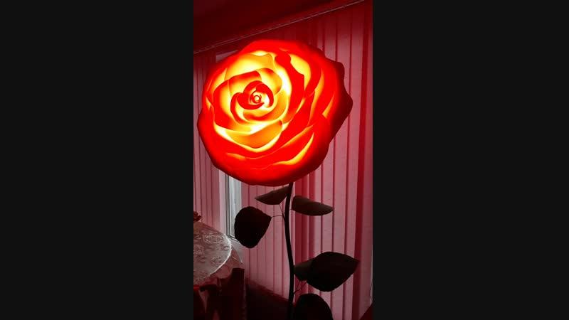 розовая роза светильник🌹🌹🌹