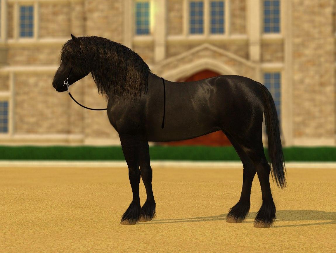 Регистрация лошадей в RHF 1.1 - Страница 40 CvpVbiqGj9o
