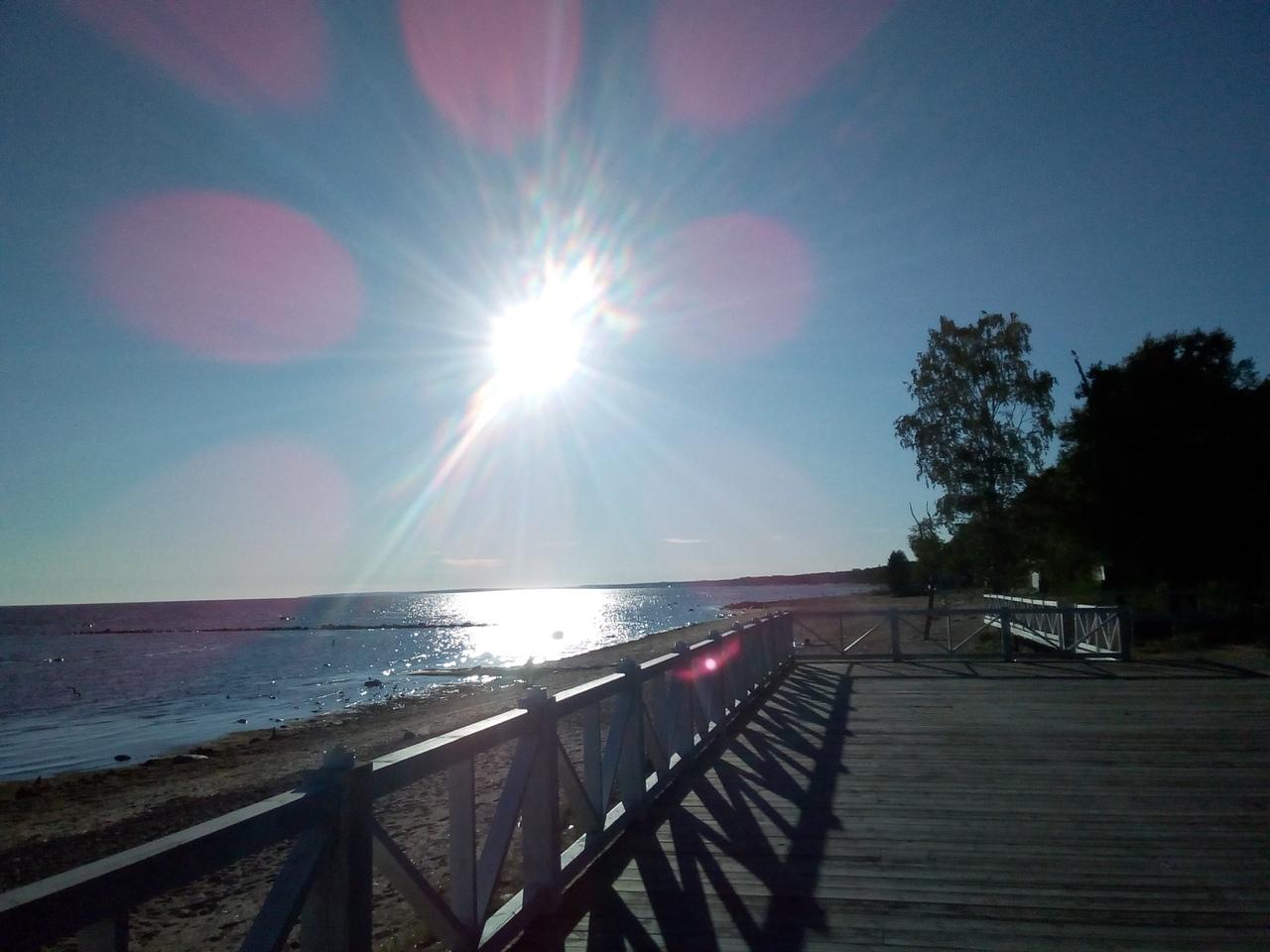 Красивое побережье Финского залива в Комарово.